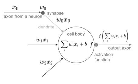 Sebuah Perceptron dan model matematisnya